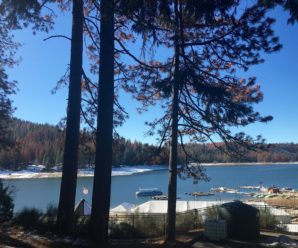 5 Great Bass Lake Area Campgrounds